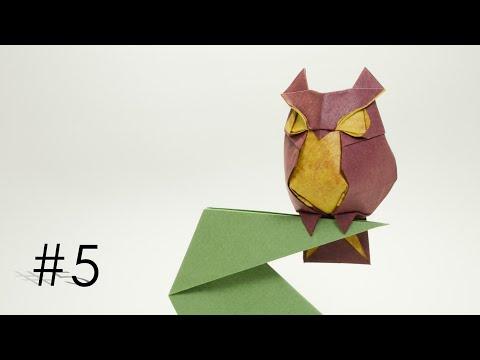 Origami Owl-Hoàng Tiến Quyết