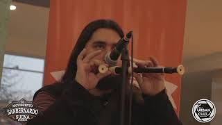 Gambar cover Mambo Celta - Danza del Viento (Video Clip en vivo 2018)