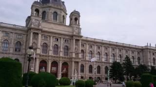 видео Музей истории искусств