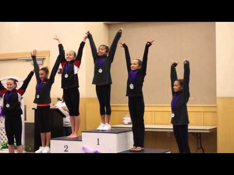 Vineyard Classic 2015 Gymnastics Awarding
