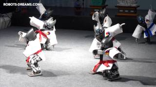 ROBOT WORLD 2014: Martial Arts Performance