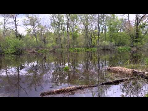 Enjoying the weather : Rancocas Creek
