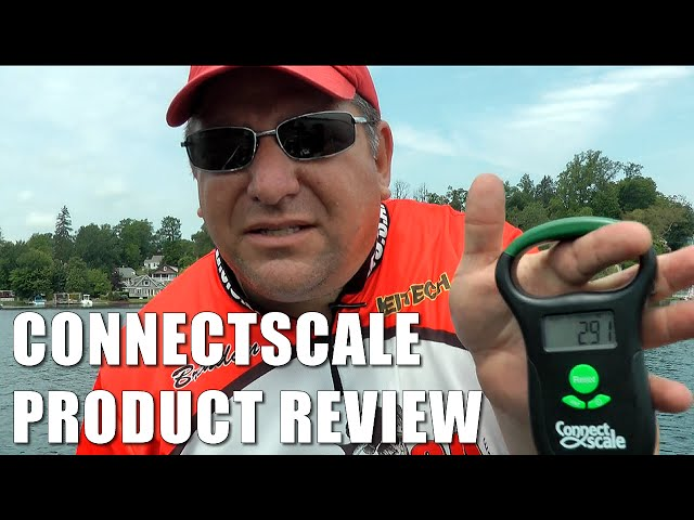 Connect Scale Review