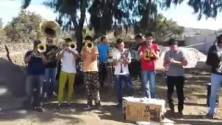 Ofelia- La Imponente Reyna de Guanajuato