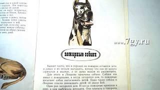 Лев Толстой. Пожарные собаки. Быль