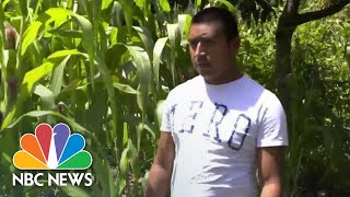 Guatemalan Farmers Say Climate Change Forcing Them To Migrate To US