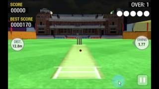 Cricket Runout 3D - Free Android Game