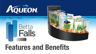 Betta Falls Aquarium: Features & Benefits