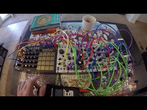 A different approach to the Make Noise Rosie module