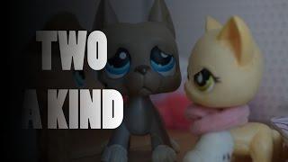Littlest Pet Shop - Two A Kind Osa 15 Kausi 2