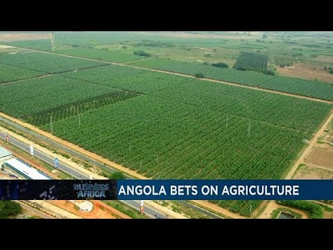 Angola bets on Agriculture and Morocco