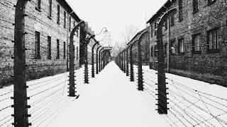 Book trailer: The Tattooist of Auschwitz