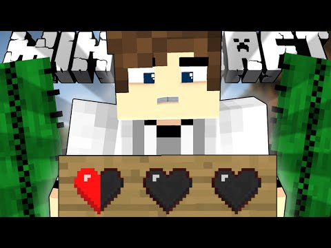 If Everyone Only Had Half a Heart - Minecraft