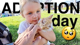 Sad Adoption Day. 3-Year-Old Hand Delivers & Gives Away Favorite Kitten to a New Home