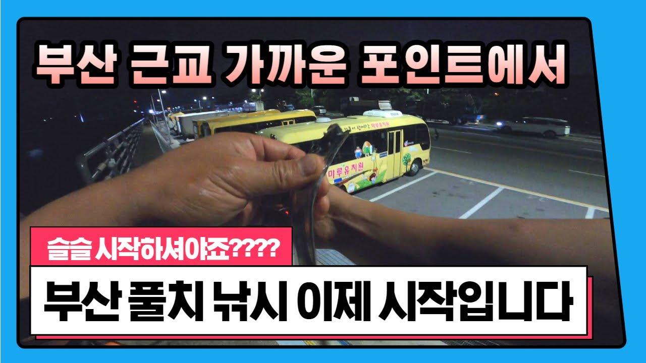 ep 44. 4K 부산 내만 풀치 낚시 맛보기(+거대 붕장어) Busan hairtail fishing experience