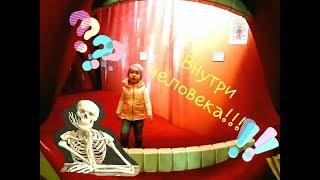 Внутри человека!!! Ксюша в музее изучает человека Развлечения Познавательное видео для детей