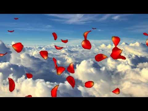 Смотреть клип Однообразные мелькают   Музыка А Бальчев,стихи Н Гумилев  кавер Г Погорельская онлайн бесплатно в качестве
