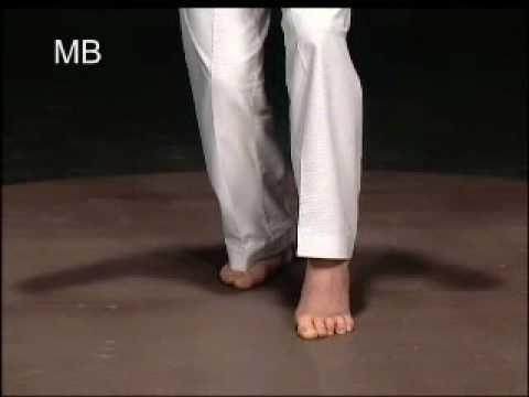 Posicion basica de Taekwondo [Kukkiwon]