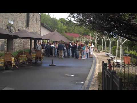 Beringer Winery with Amicis Tours.wmv