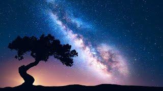 DEEP HEALING SLEEP: Sleep Music • Delta Waves • Calming Music • Meditation Music • Relaxation