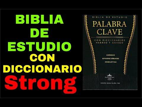 BIBLIA DE ESTUDIO PALABRA CLAVE CON DICCIONARIO STRONG (Nelson Berrú)