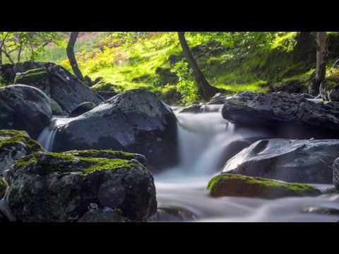Pachelbel's Canon Ambient with nature sounds