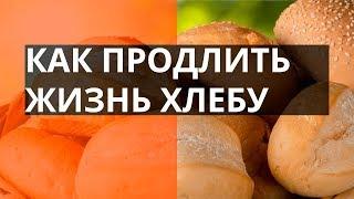 Лайфхак: как продлить жизнь хлеба? – Утро в Большом Городе