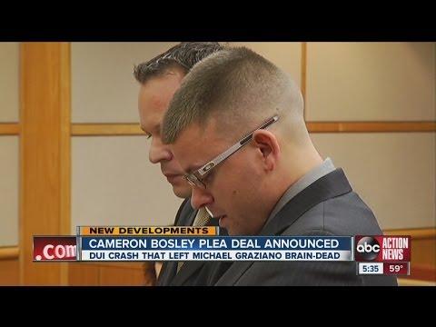 Bosley Plea in Crash that Killed Michael Graziano