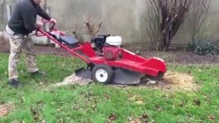Hawk stump grinder for sale on ebay.
