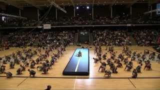 Efterskolernes Gymnastikopvisning i Forum Horsens 2015