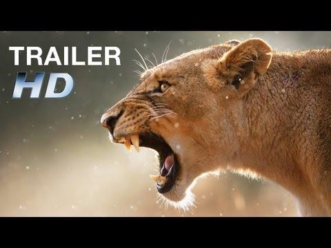 AFRICAN SAFARI 3D - Trailer HD - Deutsch / German - Ab 10. Oktober im Kino!