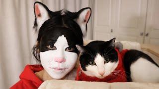 花花与三猫-主人化猫仿妆-本猫一看惊了-猫-我