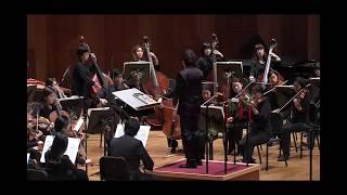[디토 오케스트라] 차이콥스키 호두까기 인형 모음곡 중 '꽃의 왈츠' Tchaikovsky - Nutcracker Suite 'Waltz of Flowers'