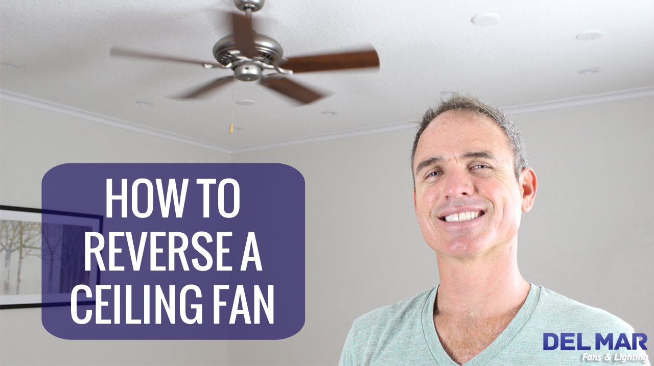 How To Reverse A Ceiling Fan - YouTube