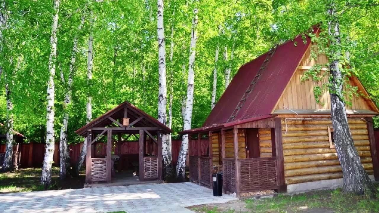 Дрова(дуб,берёза,сосна) в Воронеже купить с доставкой - YouTube