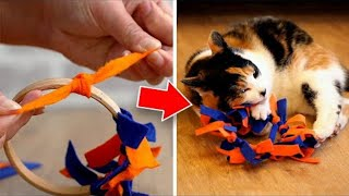 Easy To Make DIY Cat Toys Your Pet Will Love!