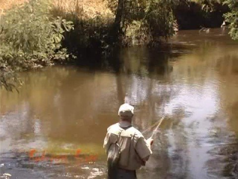 Fly Fishing The Goulburn Valley