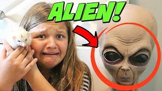 Alien Mom Steals My Hedgehog! Stalked by An Alien