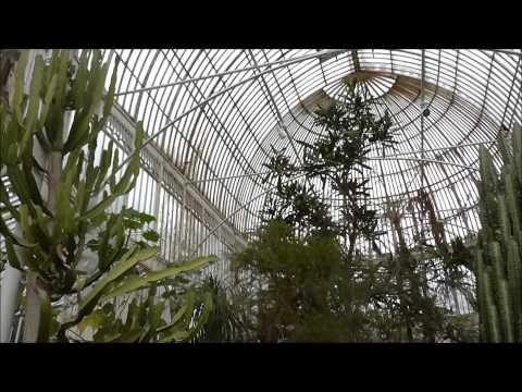 PALM HOUSE at Botanic Gardens Belfast