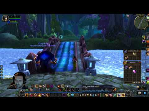 World of Warcraft CLASSIC BETA - Warlock Succubus Quest