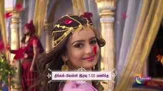 அலாவுதீன் - நாளை இரவு 7 மணிக்கு #Promo #Polimer_TV #Aladdin
