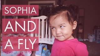 VLOG | Sophia plays with a fly!