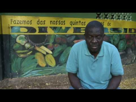 Soberanía Alimentaria e medicina tradicional en Guinea Bissau