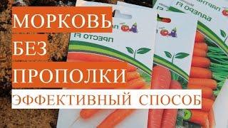 Морковь Без Прополки. Посадка Моркови Весной. (13.05.17)
