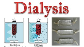 Protein purification | protein dialysis