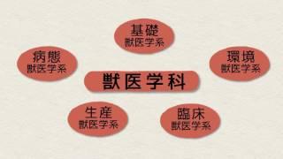 麻布大学学部紹介ビデオ:獣医学部
