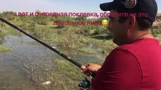 Рыбалка в таразе сентябрь 2017
