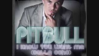 Pitbull - I Know You Want Me [OFFICIAL]