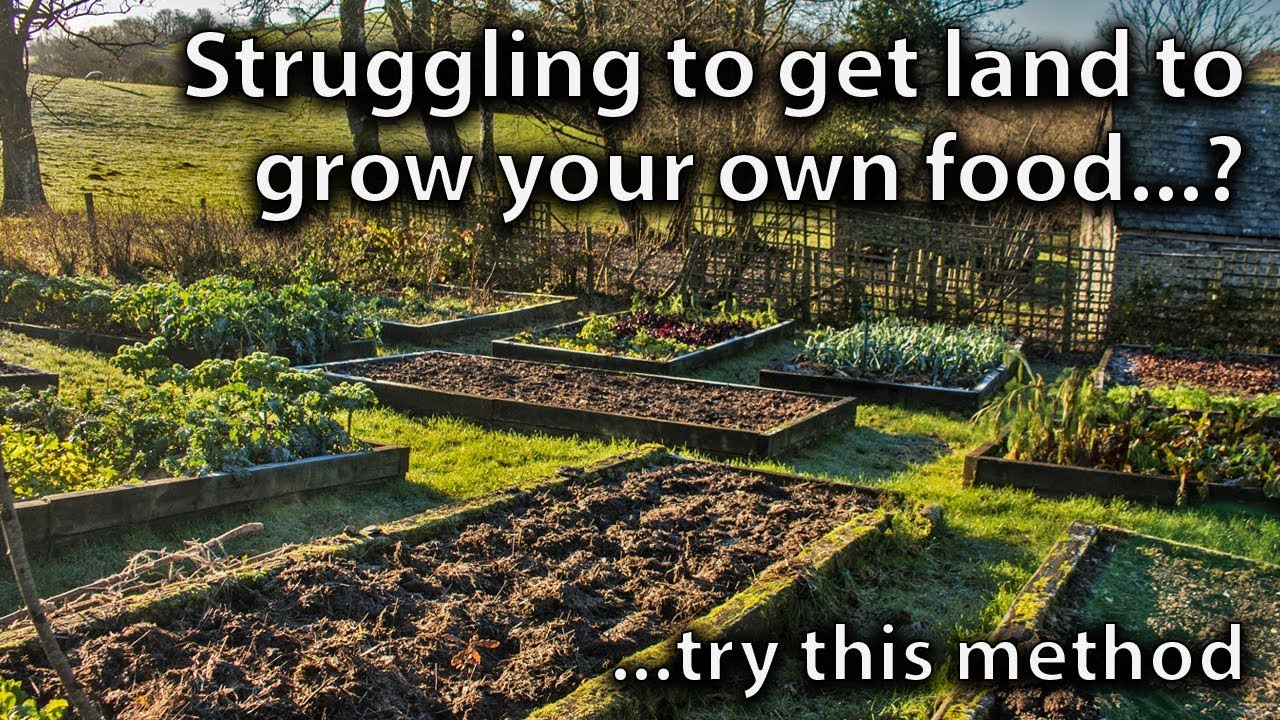 An Idea to Help you Find Land for Vegetable Gardening - YouTube