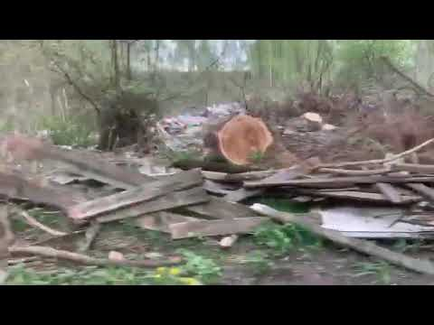 под Орлом воцарилось мусорное безумие